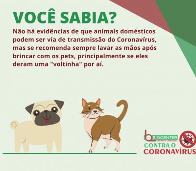 Você sabia? Animais e o Novo Coronavírus